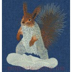 Squirrel_anm0010