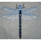 Dragonfly int0007