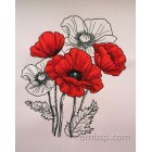 Poppies flw0128