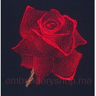 Rose_medium size_flw0022